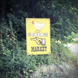 Ballymaloe Cookery School Alumni - Farmer's Market Stall - Charlie Day