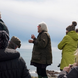 Course – Spring Foraging