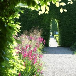 Into Lydia's Garden - Ballymaloe Cookery School
