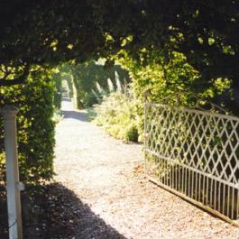 Lydia's Garden - Ballymaloe Cookery School