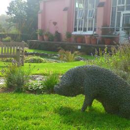 Sculpture, Water Garden - Ballymaloe Cookery School