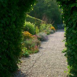 Entrance to The Water Garden - Ballymaloe Cookery School
