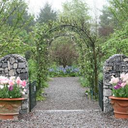 Entrance to the Ornamental Fruit Garden - Ballymaloe Cookery School