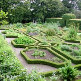 The Herb Garden - Ballymaloe Cookery School