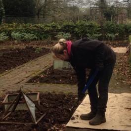 Eileen forking soil in the Kitchen Garden - Ballymaloe Cookery School