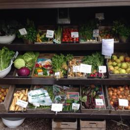 Winter veg and fruit from the gardens at the cookery school shop - Ballymaloe Cookery School