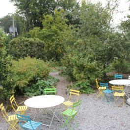 The Terrace, Ornamental Fruit Garden - Ballymaloe Cookery School