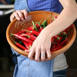 Organic Produce - Ballymaloe Cookery School