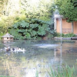 Temple, Old Pleasure Garden - Ballymaloe Cookery School