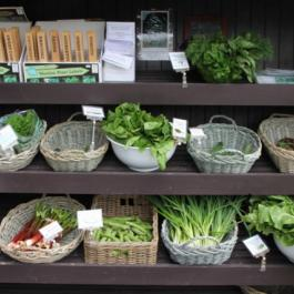 Fresh Organic Produce, The Farm Shop - Ballymaloe Cookery School