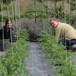 Interns Working In The Glasshouses - Ballymaloe Cookery School