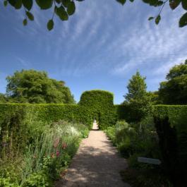 Sunny Day, Lydia's Garden - Ballymaloe Cookery School