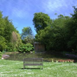 Old Pleasure Garden - Ballymaloe Cookery School