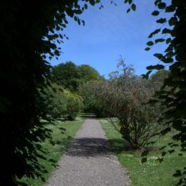 Into the Old Pleasure Garden - Ballymaloe Cookery School
