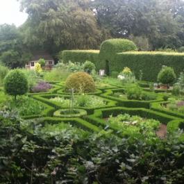 The Herb Garden in Summer.