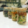 Fermenting Sauerkraut at Ballymaloe Cookery School